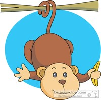 Monkey with a banana suspended from a branch