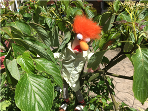 Beaker in dogwood